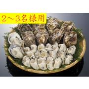 【お歳暮 ギフト お買い得】【広島産 生牡蠣】今季とれたてプリップリ!海のミルク!むき身500g・殻付き10個セット(2~3人用)